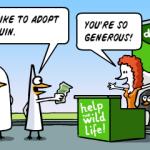 Helping the wildlife