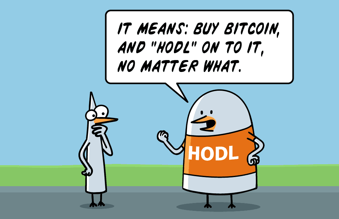 It means, buy Bitcoin and hold on to it, no matter what.