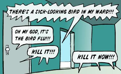 There's a sick-looking bird in my ward! Oh my God, it's the bird flu!!! Kill it!!! Kill it now!